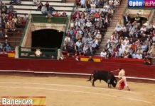 Курортный сезон Орла и Решки - Валенсия (Испания)