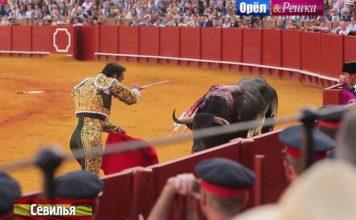 Юбилейный сезон Орла и Решки - Севилья (Испания)