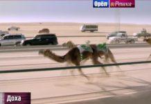 Орел и Решка: Рай и Ад 2 - Доха (Катар)