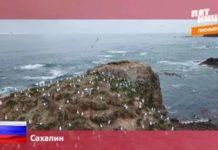 Орел и Решка: Россия - Сахалин (14 серия)