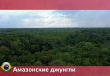 Орел и Решка: Чудеса света - джунгли Амазонки 22 сезон 13 выпуск