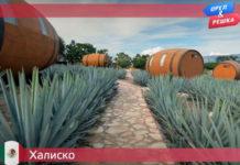 Орел и Решка: Ивлеева VS Бедняков - Халиско (23 сезон 14 выпуск)
